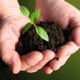 go to goodies page