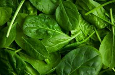 11 Dark Green Leafy Vegetable Recipes | SparkPeople