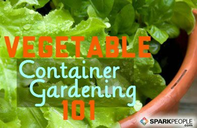 A Beginners Guide to Container Vegetable Gardening SparkPeople